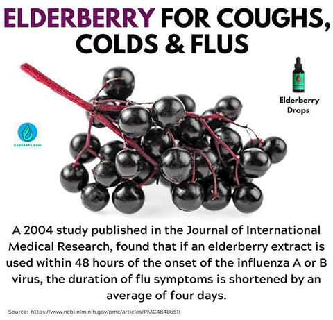 Get Our Elderberry Herbal Drops...