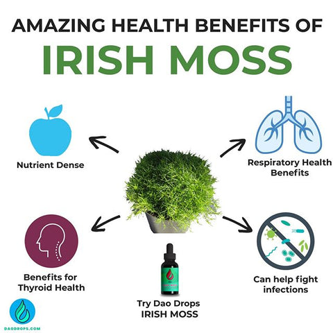 Get @daodrops 'Irish Moss' Herbal...