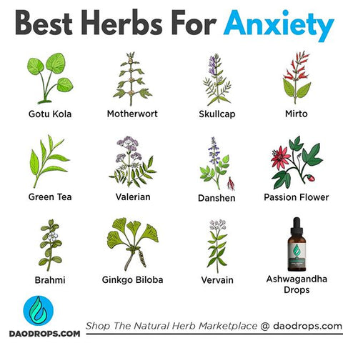 12 herbs 🎋 that naturally...