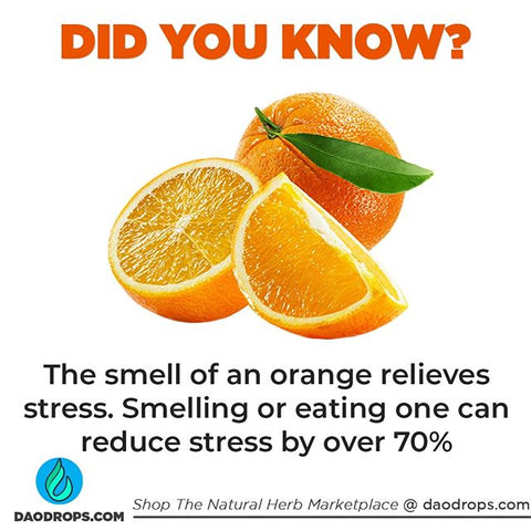 Are oranges 🍊🍊 one of...