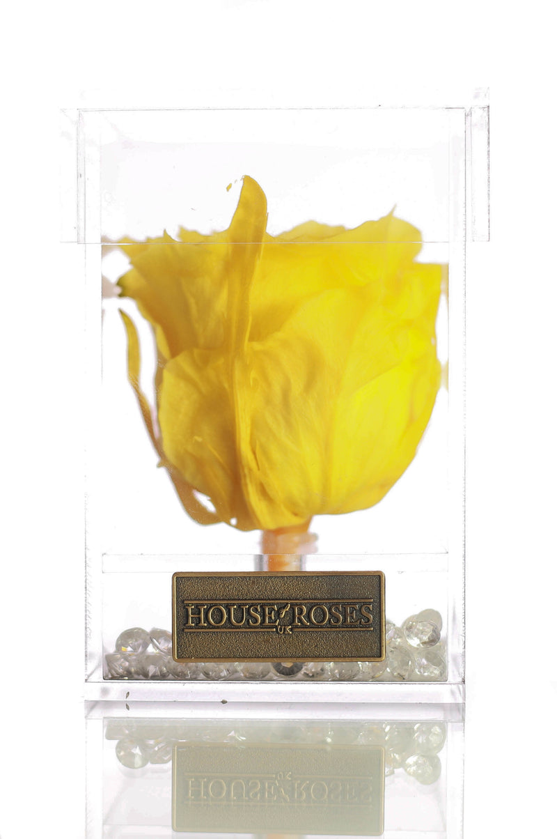 Yellow Eternal Rose In Cube