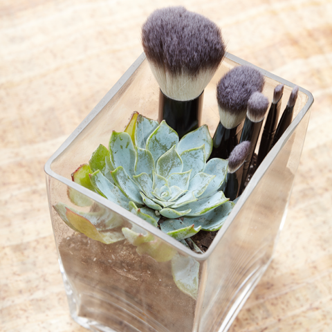 Sh. professional synthetic travel brush set