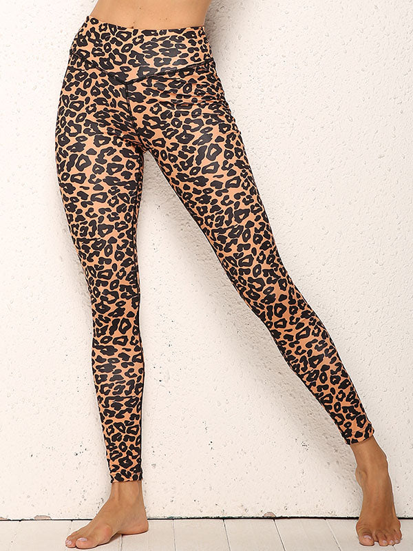 Leopard Printed Cropped Tanks And Leggings Sport Suits