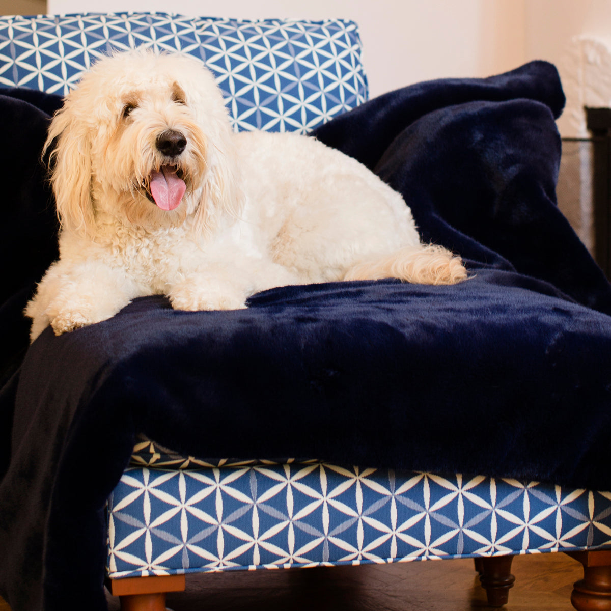 Navy Faux Fur Large Pet Blanket