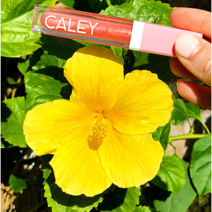 best natural lip gloss