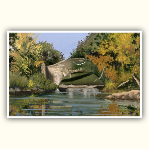 Central Park Autumn Leaves Poster