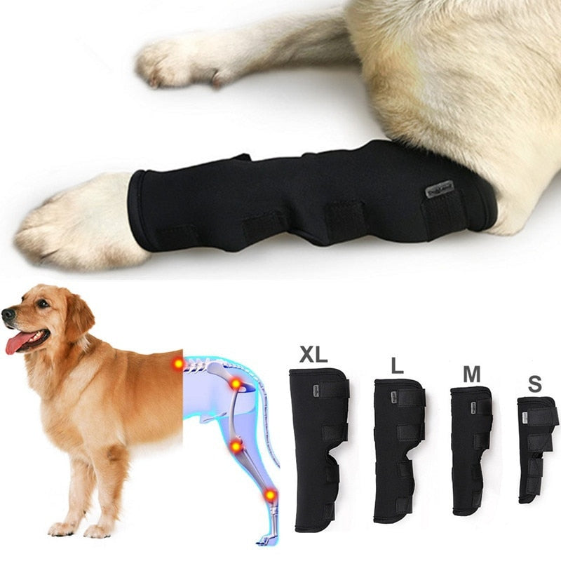 Breathable Injury Recovery Dog Knee Brace and Elbow Pads dog leg brace dog elbow pads