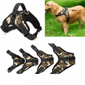 no-pull-dog-harness-with-leash-attachment-5
