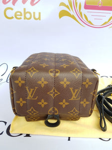 Authentic Louis Vuitton Palmspring Mini backpack reseller