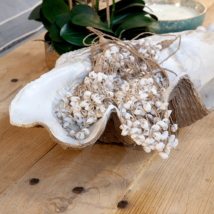 Clam filled with shell tassels on coffee table.