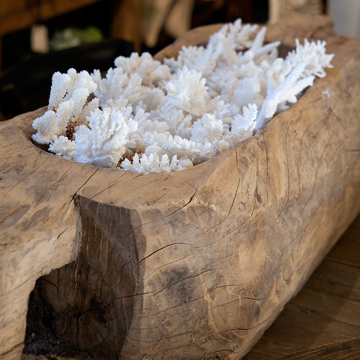 Small white coral in a large bohai bowl.
