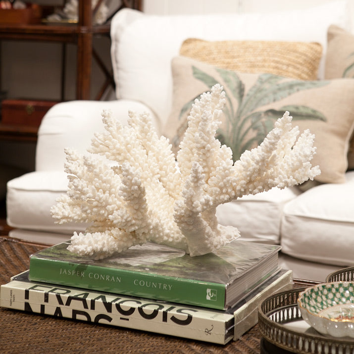 Large white coral on books.
