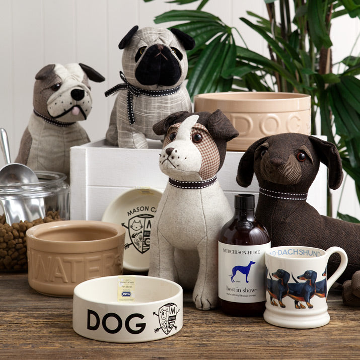 A collection of Alfresco Emporium's favourite dog products.