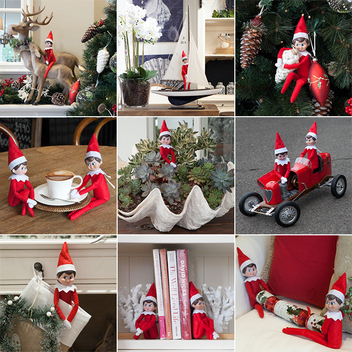 Pictures of what the elves got up to last year.