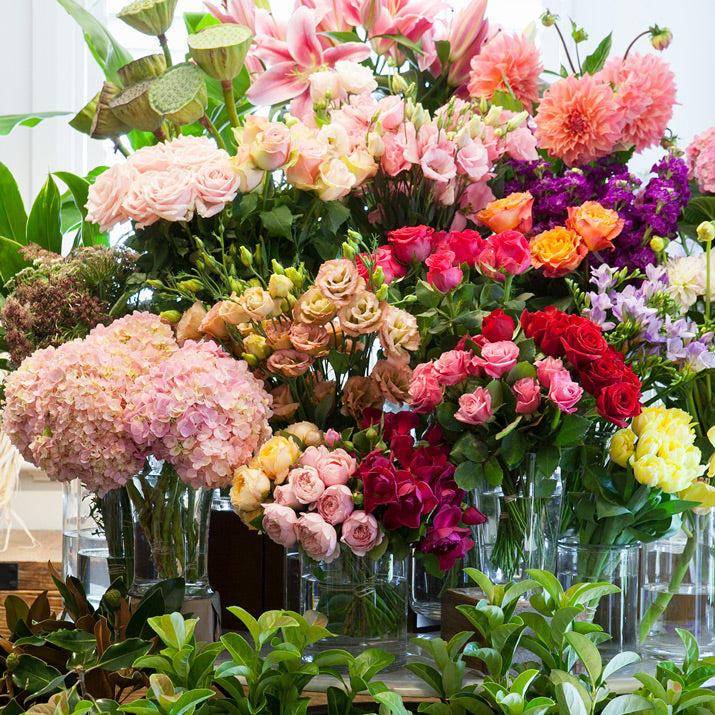 Colourful flowers displayed together.