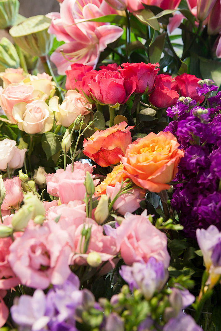 A close up of colourful flowers.