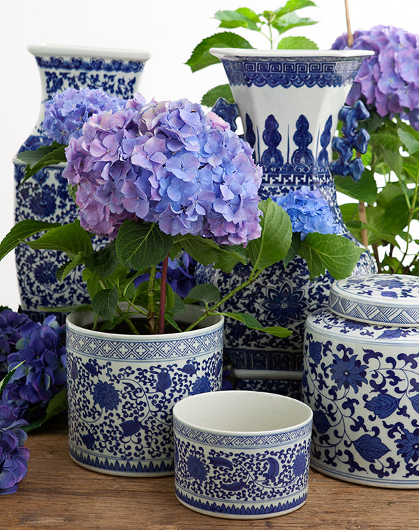 blue and white china vases with hydrangeas