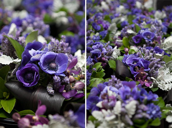 A stunning collection of purple flowers.