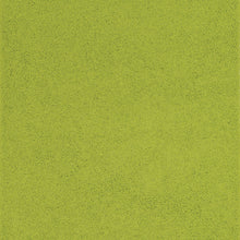 Load image into Gallery viewer, http://images.esellerpro.com/2278/I/906/62/fiji-shaggy-pile-area-rug-mat-kiwi-green-swatch.jpg