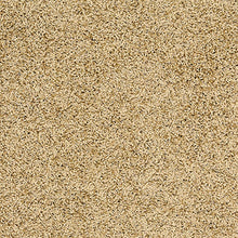 Load image into Gallery viewer, http://images.esellerpro.com/2278/I/906/62/fiji-shaggy-pile-area-rug-mat-latte-swatch.jpg