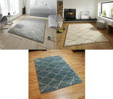 Load image into Gallery viewer, http://images.esellerpro.com/2278/I/117/479/royal-nomadic-shaggy-pile-diamond-rug-5413-group-image.jpg