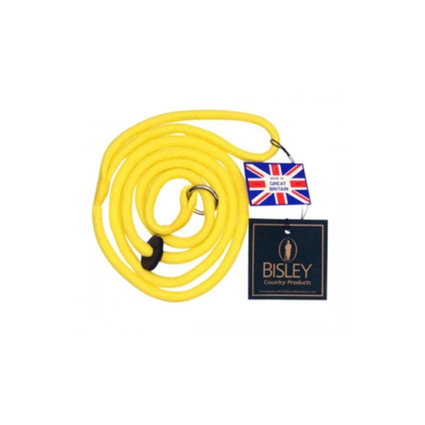Loose Yellow Braid Dog Slip Lead