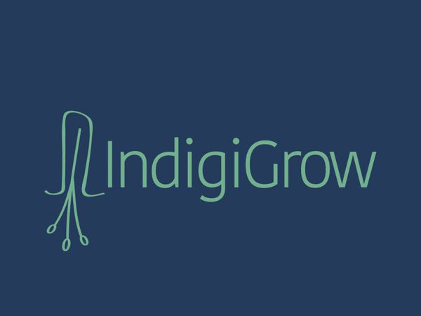 Indigigrow Native Bushfoods and Plants
