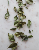 Cinnamon Myrtle ~ Whole leaf dried. 50g