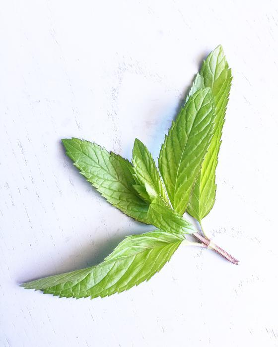 Warndu Australian Native, Aussie Wild Mint ~ Dried and ground. 50g.
