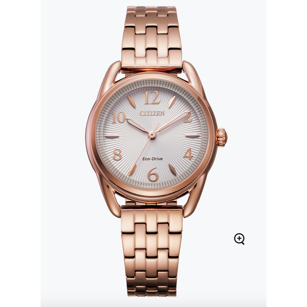 LADIES ECO DRIVE FE1213-50A