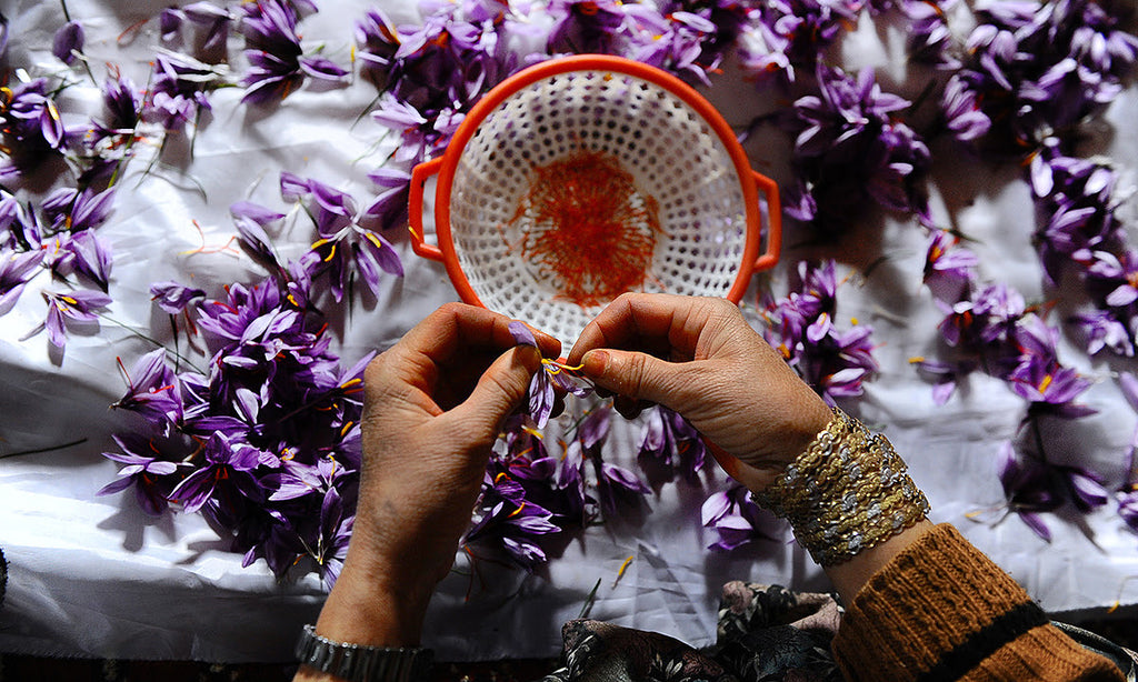 Saffron used in EltheCook Readymade Tadka (Tempered SPice blends). Shipping worldwide
