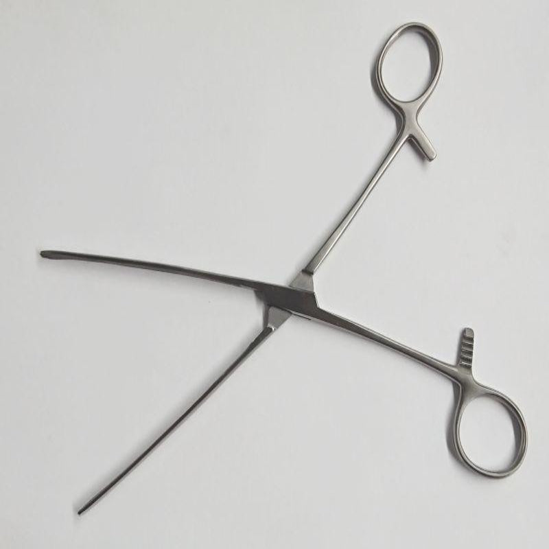 Medical Steel Forceps - Jazzy's Sexy Vibes