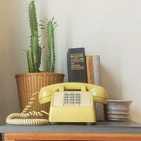 House plants, vintage books, handmade pottery, vintage telephone, wicker basket