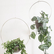 Load image into Gallery viewer, Brass Hoop Plant Hanger