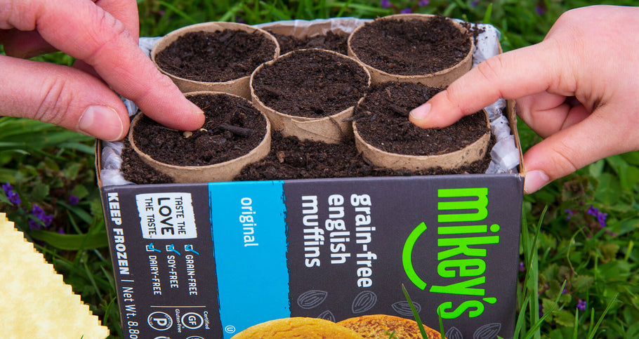 Turn a Mikey's English Muffin Box into a Recycled Seed Starting Planter