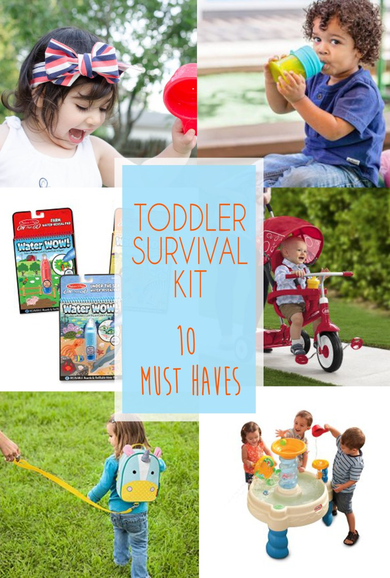 Toddler Survival Kit Must Haves