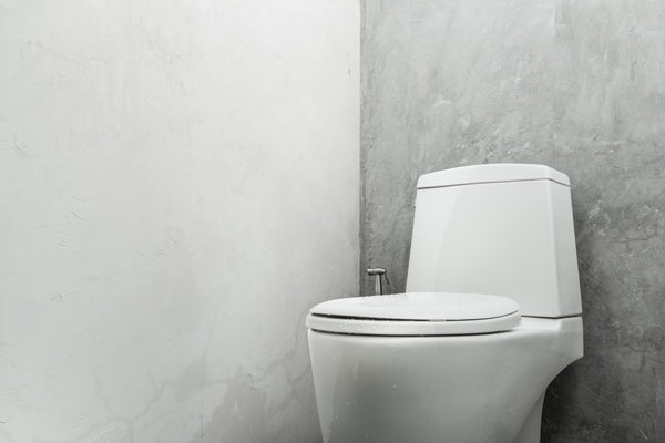 How to Keep Germs at Bay & Disinfect the Toilet Seat-PeeSafe