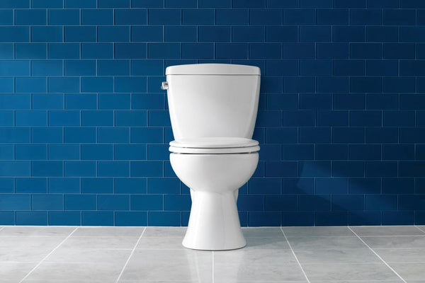 Know about your toilets from PeeSafe
