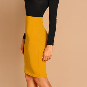 Ginger Pencil Bodycon Skirt