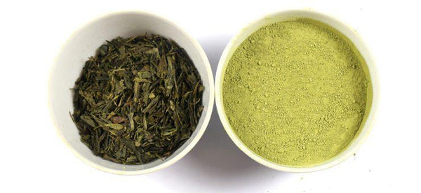 The Difference Between Matcha and Green Tea - aila