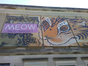 MEOW: A Cat Inspired Museum Exhibition