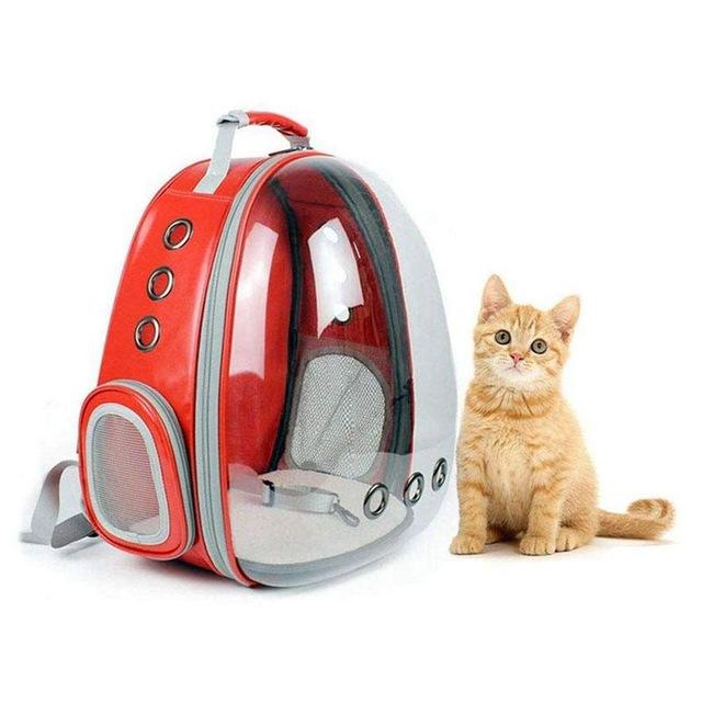 Angle of cat travel backpack carrier