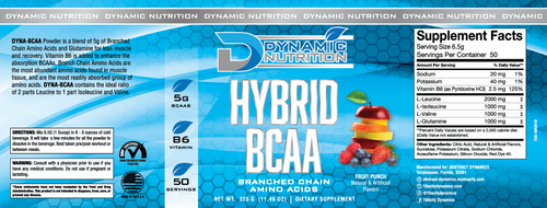 HYBRID BCAA  Fruit Punch