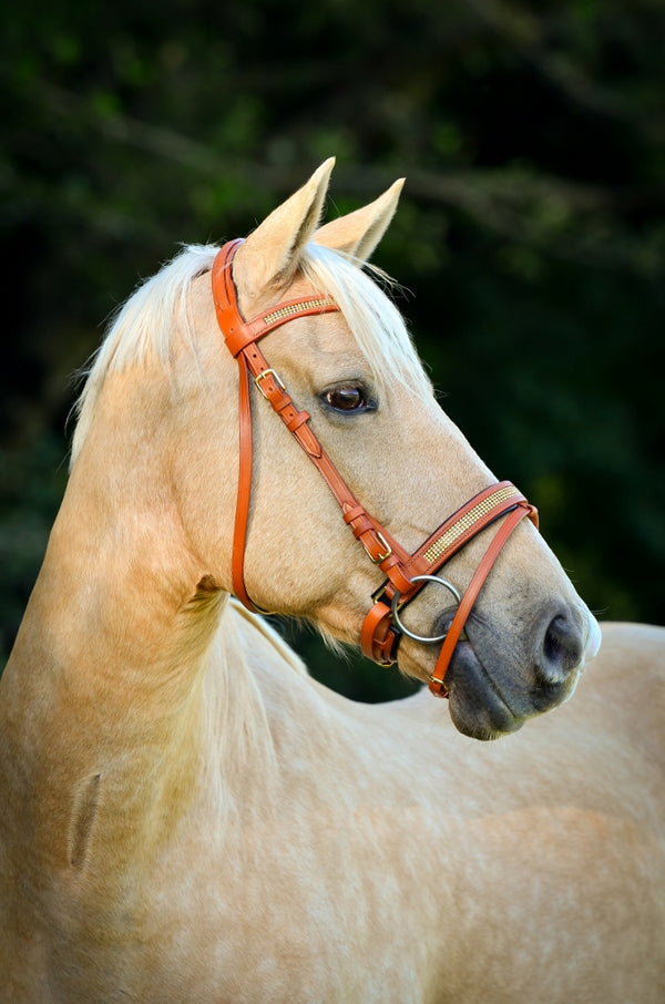 ST-BR/001 Tan Leather Bridle with Gold Diamantes