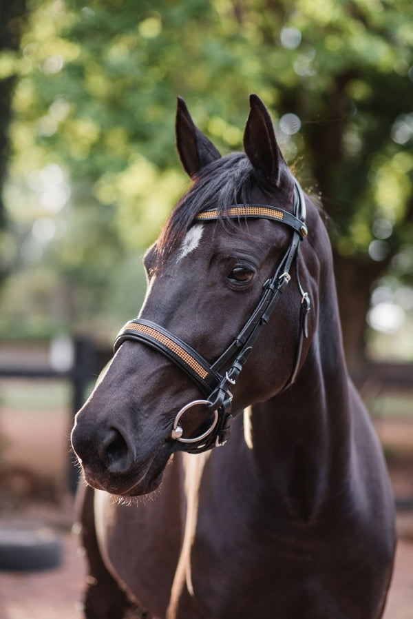 ST-BR/008 Black Leather Bridle with Gold Diamantes