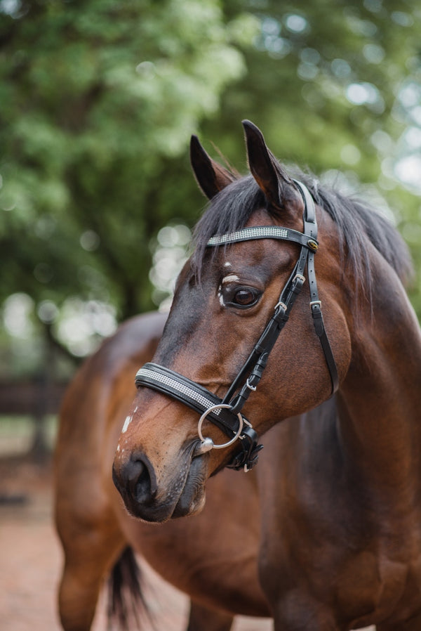 ST-BR/007 Black Leather Snaffle Bridle with Silver Diamantes