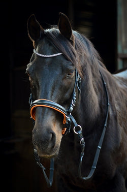 ST-BBR/003 Black Leather Bitless Bridle Diamantes
