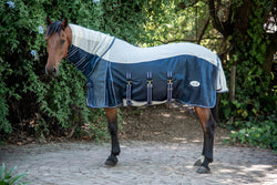 Blue Fly Sheet on Horse
