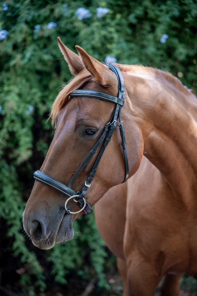 ST-BR/026 Brown Leather Bridle with Stitching