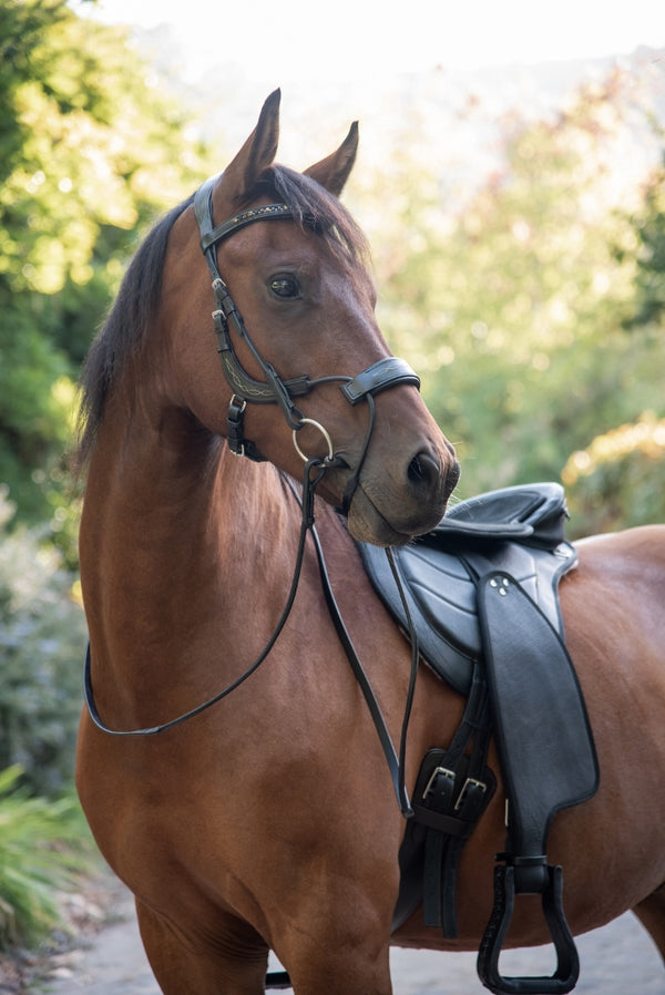 ST-BR/014 High Pressure Relief Black Bridle with Brown Stones